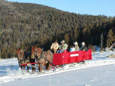 Deep Snow Winter Sleigh Ride.