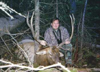 Tom King`s elk